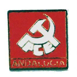 Pin PCE Andalucía